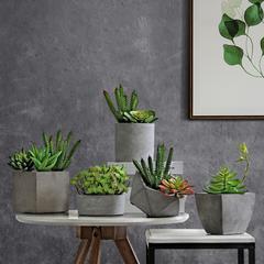 北欧水泥多肉花盆创意田园风绿植盆栽装饰品客厅阳台台面做旧花盆
