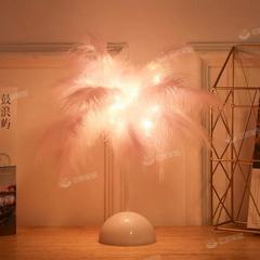 LED台灯卧室床头灯ins小夜灯羽毛卧室装饰少女心星星灯网红装饰灯