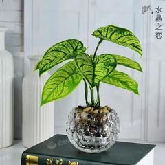假花仿真花清新绿植金钱草盆栽客厅办公桌装饰摆件仿真植物盆景