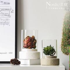 北欧现代玻璃罩微景观摆件客厅书房桌面装饰品摆件创意玻璃罩摆设