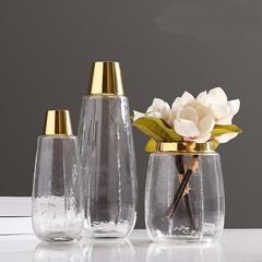 北欧花瓶玻璃透明欧式简约家居装饰金属水培玻璃花瓶摆件客厅插花